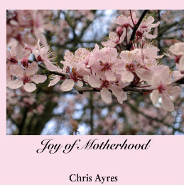 View Joy of Motherhood by Chris Ayres