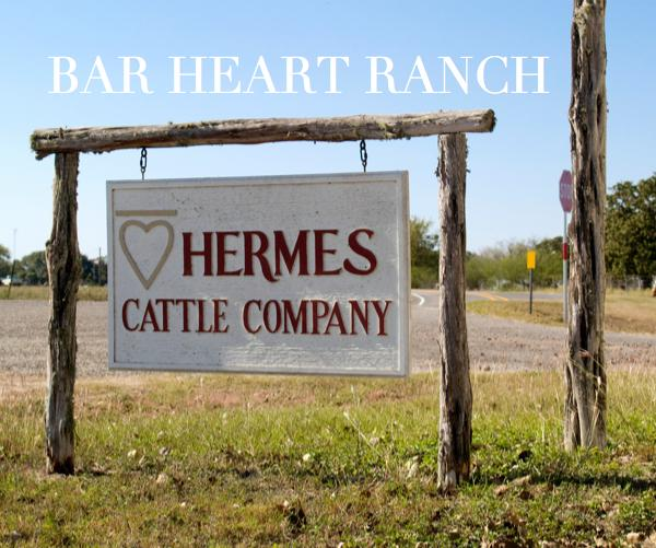 View BAR HEART RANCH by Deleigh Hermes