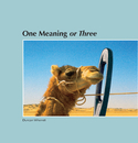 One Meaning or Three - Portfolios photo book