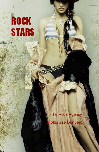 Click to preview Rock Stars pocket and trade book
