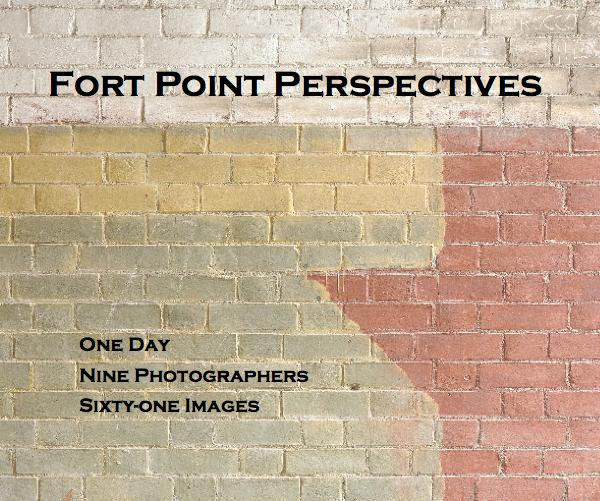 Click to preview Fort Point Perspectives photo book