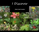 I Discover - Arts & Photography photo book
