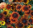 Kew Gardens 2014 - Travel photo book