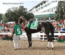 Haskell Invitational 2014 - Sports & Adventure photo book
